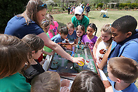 NWA Democrat-Gazette/DAVID GOTTSCHALK  Carrie Byron, outreach coordinator with Beaver Watershed Alliance, reaches Wednesday, April 10, 2019, over students from Holcomb Elementary School to pour water on an erosion table during the Fayetteville Public Schools Green Teams Celebration at the Botanical Garden of the Ozark. The celebration for the Green Team members and leaders included an award ceremony, student presentations and a variety of educational stations on the grounds.