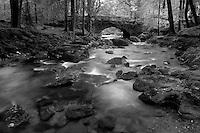 The River Croe, Ardgartan, the Argyll Forest Park,