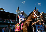 Big Brown rolls out onto the track with jockey Kent Desormeaux at Churchill Downs for the 2008 Kentucky Derby. Big Brown was favored to win and he won the race handily.