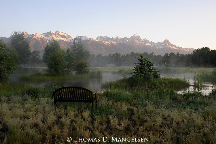 Early morning fog rises off a pond below the Tetons in Northwest Wyoming.