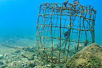 Old fishing cage underwater, France, Marseille, Mediterranean Sea