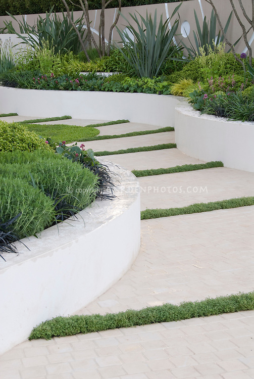 Garden path plant flower stock photography for White garden walls