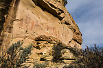The Sego Canyon pictograph rock art panel in Utah was painted by the people of Archaic Culture in the Barrier Canyon style between 1,500 and 4,000 years ago.