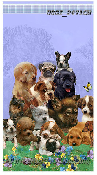 GIORDANO, CUTE ANIMALS, LUSTIGE TIERE, ANIMALITOS DIVERTIDOS, paintings+++++,USGI2471CN,#ac#, EVERYDAY,dogs