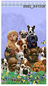GIORDANO, CUTE ANIMALS, LUSTIGE TIERE, ANIMALITOS DIVERTIDOS, paintings+++++,USGI2471CN,#ac#, EVERYDAY,dogs