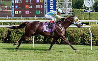 Rocket Heat (no. 10), ridden by John Velazquez and trained by Carlos Martin, wins Race 8 July 29 at Saratoga Racecource, Saratoga Springs, NY.  (Bruce Dudek/Eclipse Sportswire)