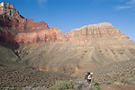 Arizona, Grand Canyon, Grand Canyon National Park, Tonto Trail, below the South Rim, Hermit - Bright Angel Loop Trail, Southwest, U.S.A.,