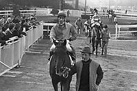 - Milan, San Siro Racecourse, gallop racing <br /> <br /> - Milano, ippodromo di S.Siro, corse al galoppo