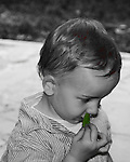 Child smelling a sweet basil leaf.