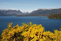 Argentina, Villa La Angostura, National Park Nahuel Huapi: Lago Nahuel Huapi | Argentinien, Villa La Angostura, Nationalpark Nahuel Huapi: Lago Nahuel Huapi