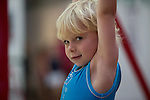 Welsh Gymnastics Clubs