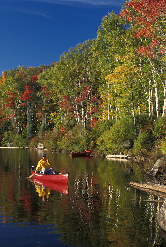 canoeing, reflection, canoe, Vermont, VT, Woman paddles a red canoe on the calm waters of Kettle Pond in Groton State Forest surrounded by birch trees and colorful maple trees in the fall.