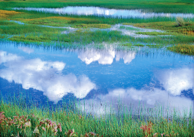 clouds reflecting on water in wetland at Potholes State Park, Washington State