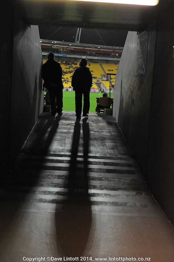 A fan makes her way into the grandstand seating during the ANZAC Day AFL match between St Kilda Saints and Brisbane Lions at Westpac Stadium, Wellington, New Zealand on Friday, 25 April 2014. Photo: Dave Lintott / lintottphoto.co.nz