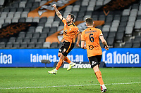 29th July 2020; Bankwest Stadium, Parramatta, New South Wales, Australia; A League Football, Melbourne Victory versus Brisbane Roar; Scott McDonald of Brisbane Roar celebrates his goal for 0-1 in the 56th minute
