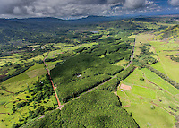 Aerial view of green landscape, Lihue, Kauai