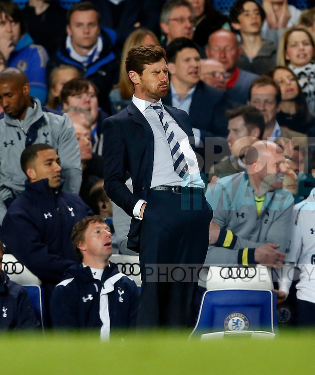 Tottenham's Andre Villas-Boas looks on dejected after a missed chance..- Barclays Premier League - Chelsea vs Tottenham  - Stamford Bridge - London - 8th May 2013 - Pic David Klein/Sportimage