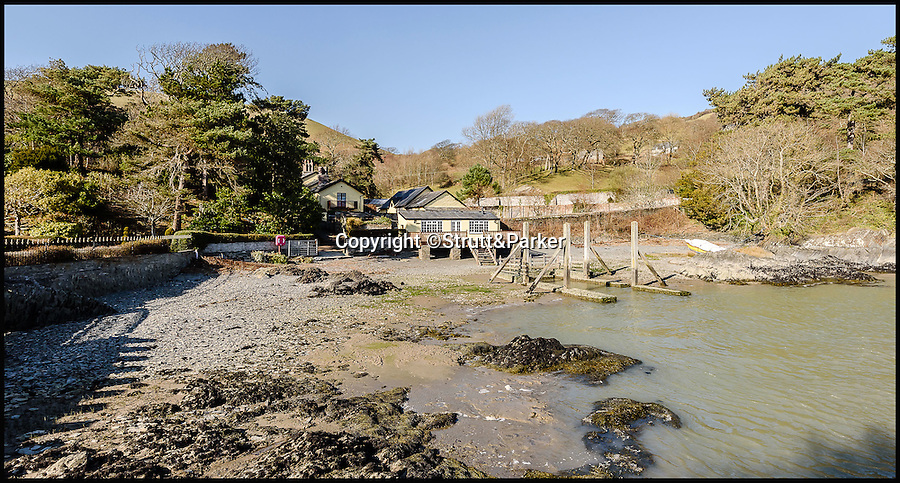 BNPS.co.uk (01202 558833)<br /> Pic: Strutt&Parker/BNPS<br /> <br /> View back fro the island to the house and boat dock.<br /> <br /> Go West...ultimate coastal hideaway with its own private island.<br /> <br /> A beautiful family home with its own private island is the perfect purchase for anyone with a sense of adventure.<br /> <br /> Trefri Hall is a stunning Grade II listed house with the Snowdonian hills as a backdrop and incredible views over the Dovey Estuary in mid Wales.<br /> <br /> But the real selling point is the small rocky island you can reach by bridge with your own castellated folly - ideal for pirate games or a spot of hide and seek.<br /> <br /> The house is up for sale with Strutt & Parker for £1.75million.