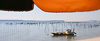 Europe/France/Aquitaine/33/Gironde/Bassin d'Arcachon/Le Cap Ferret: Parasol et cahland ostréicole sur le Bassin d'Arcachon