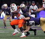 at Husky Stadium October 22, 2016 in Seattle. The Huskies beat the Beavers 41-17. © 2016. Jim Bryant Photo. All Rights Reserved.