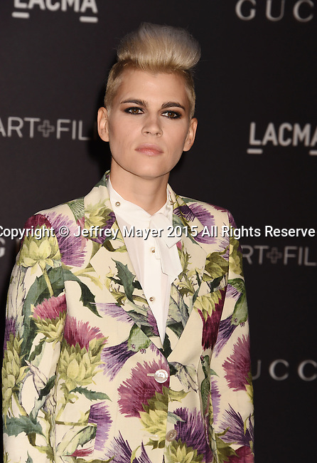 LOS ANGELES, CA - NOVEMBER 07: Musician Kaki King attends LACMA 2015 Art+Film Gala Honoring James Turrell and Alejandro G Iñárritu, Presented by Gucci at LACMA on November 7, 2015 in Los Angeles, California.