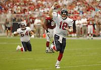 Aug 18, 2007; Glendale, AZ, USA; Houston Texans quarterback Sage Rosenfels (18) celebrates after throwing a touchdown pass in the third quarter against the Arizona Cardinals at University of Phoenix Stadium. Mandatory Credit: Mark J. Rebilas-US PRESSWIRE Copyright © 2007 Mark J. Rebilas