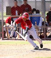 Ollie Linton / Arizona Diamondbacks 2008 Instructional League..Photo by:  Bill Mitchell/Four Seam Images