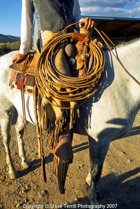 USA, Oregon, Buckaroo with lasso rope ready for cattle roundup in Jefferson County.