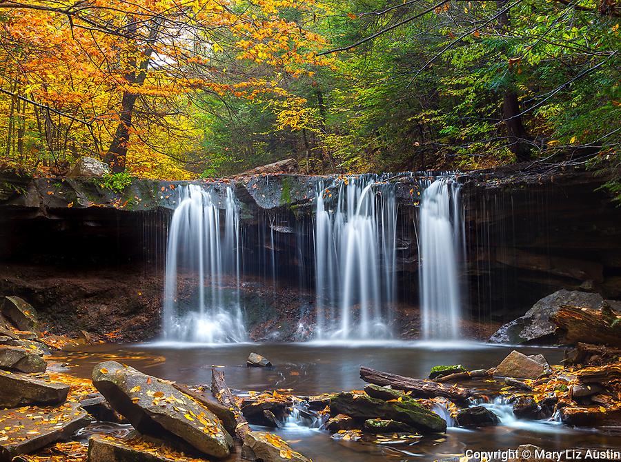 Ricketts Glen State Park, PA: Oneida Falls on Kitchen Creek in autumn