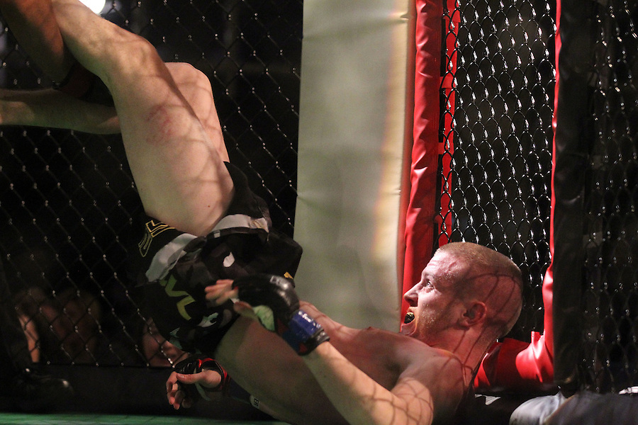 Full Contact Combat Sport >> Mma Sports Mixed Martial Arts Cage Fighting Karate Boxing Wrestling