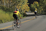 Caucasian bikers riding downhill on the Maroon Bells Creek Road with autumn Aspen trees, west of the town of Aspen, Colorado, USA