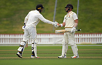 Malcolm Nofal and Luke Woodcock. Day one of the Plunket Shield cricket match between Wellington Firebirds and Central Stags in Wellington, New Zealand on Wednesday, 17 March 2018. Photo: Dave Lintott / lintottphoto.co.nz