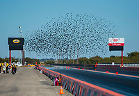 Oct 18, 2019; Ennis, TX, USA; A flock of birds fly over the track during NHRA qualifying for the Fall Nationals at the Texas Motorplex. Mandatory Credit: Mark J. Rebilas-USA TODAY Sports