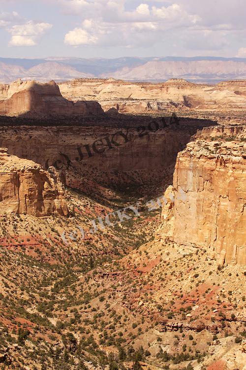 Secret Mesa - Canyons of San Rafael.  North of I-70, mile maker 122.