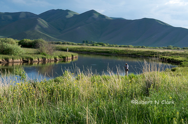 Fly Fishermen fishing the Brown Drake hatch on Silver Creek at the Point of Rocks access, near Picabo, Idaho