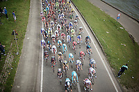 peloton under the bridge along the canal in the final local laps<br /> <br /> 103rd Scheldeprijs 2015