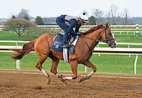 04-14-18 Keeneland Graded Stakes