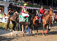 R Gypsy Gold (no. 5) runs in the Personal Ensign Invitational Handicap on August 26, 2012 at Saratoga Race Track in Saratoga Springs, New York.  (Bob Mayberger/Eclipse Sportswire)