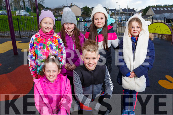 At the Family Walk &amp; Fun Run in aid of Miltown Listry LGFA and the Nagle Rice Primary School in Milltown on Sunday.<br /> Kneeling l to r: Kaylah O&rsquo;Connor and Joshua Minnie.<br /> Back l to r: Bella Minnie, Anna O&rsquo;Shea, Sarrah &Oacute; Grady and Kelly Dennehy.