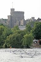 11 JUN 2006 - WINDSOR, UK - Age group competitors start in the shadow of Windsor Castle at the Windsor Castle. (PHOTO (C) NIGEL FARROW)