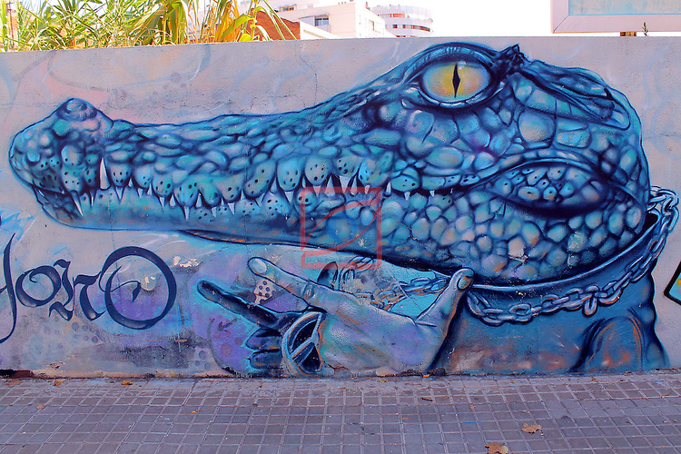 Street Art-Graffittis.<br /> Sabadell carretera Barcelona.