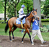Ride Away before The Nick Shuk Memorial Stakes at Delaware Park racetrack on 7/10/14