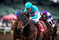 ARCADIA, CA - FEBRUARY 04: Royal Mo #1, ridden by Victor Espinoza wins the Robert B. Lewis Memorial Stakes at Santa Anita Park on February 4, 2017 in Arcadia, California. (Photo by Alex Evers/Eclipse Sportswire/Getty Images)