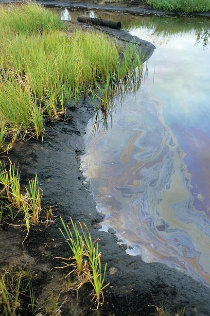 An oil spill from leaking pipes pollutes a lake near Niznevartovsk, Khanty Mansiysk, W. Siberia, Russia