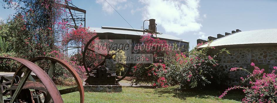 France/DOM/Martinique/Le François/Domaine de l'Acajou/Distillerie Clément: Habitation Clément - Le jardin - Détail bougainvillées