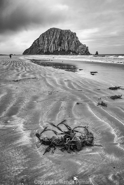 Early morning low tide leaves ripple effects in the sand at Morro Strand SP.