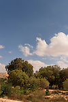 Israel, the Negev desert. A view of Be'erotaim