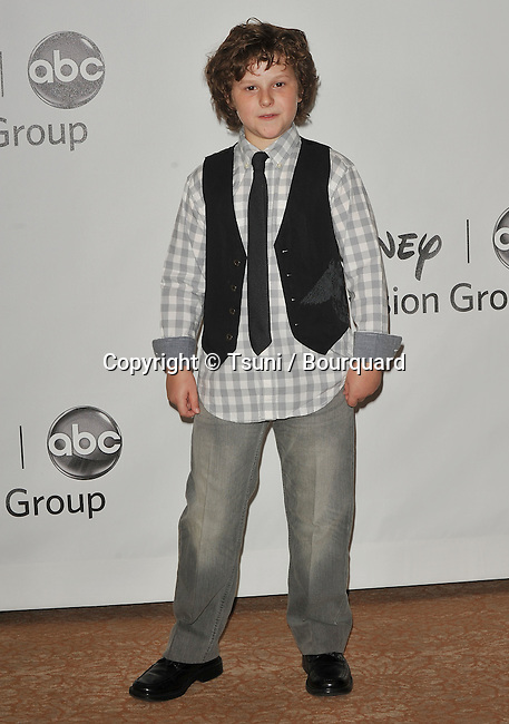 Nathan Gould<br /> ABC - Disney_ tca party at the Beverly Hiton Hotel in Los Angeles.