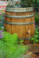 Rain Barrel in Garden collecting water