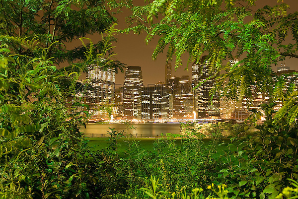 AVAILABLE FROM JEFF AS A FINE ART PRINT.<br /> <br /> AVAILABLE FROM GETTY IMAGES FOR COMMERCIAL AND EDITORIAL LICENSING.   Please go to www.gettyimages.com and search for image # 135307798.<br /> <br /> Lower Manhattan's Financial District Skyline Illuminated at Night, Viewed thru Trees and Shrubs in Brooklyn's Brooklyn Bridge Park, New York City, New York State, USA